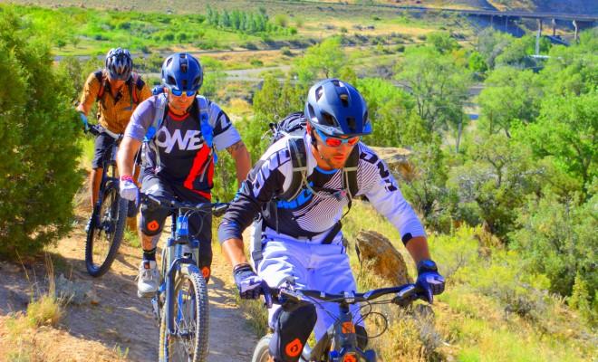 Palisade, Grand Valley, expect increase in European mountain