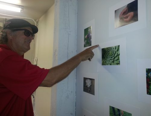 'Science through the Lens' photos on display, Sept. 6 -12